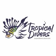 Tropical divers